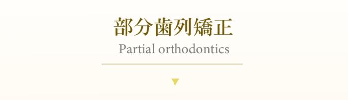 部分歯列矯正